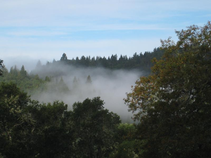 Hills Above The Russian River 115